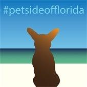 #petsideofflorida