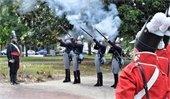 Jacksonian Guard Colors