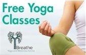 Free Yoga Classes informational flier