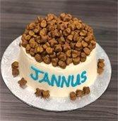 K-9 Jannus' dog-safe cake