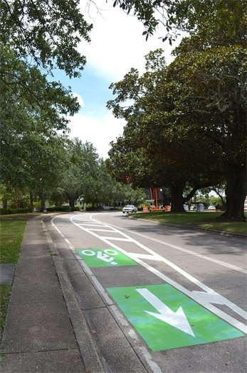 New bike lanes along Palafox Street with a tree canopy