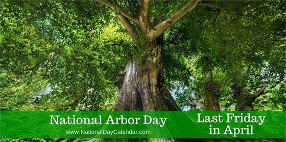 National Arbor Day image