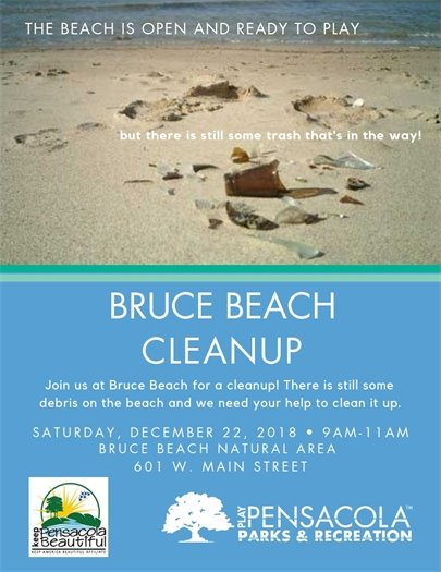 An information flier about Bruce Beach. Clean up day is December 22 from 9-11 a.m.