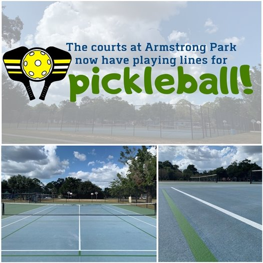 Picture showing the courts at Armstrong Park