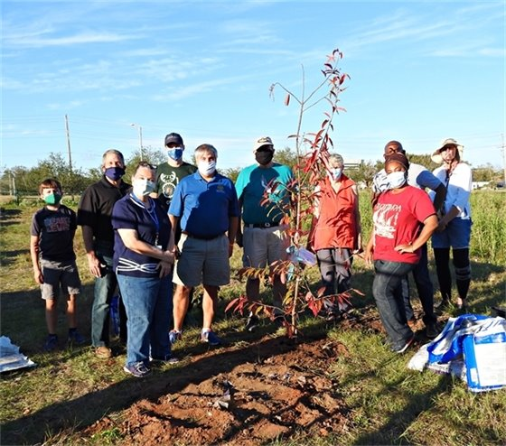 Volunteers stand with a newly-planted tree at Bruce Beach