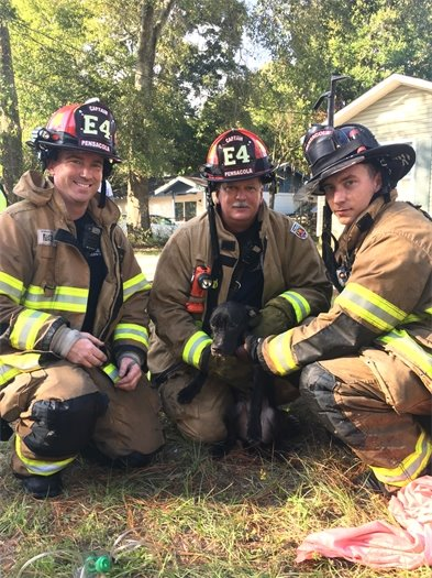 Firefighters with a puppy they rescued from a house fire