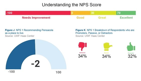 Survey results with net promoter score chart