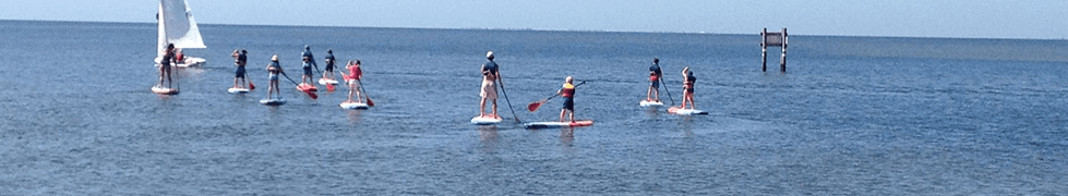 Paddleboarding in the Bay
