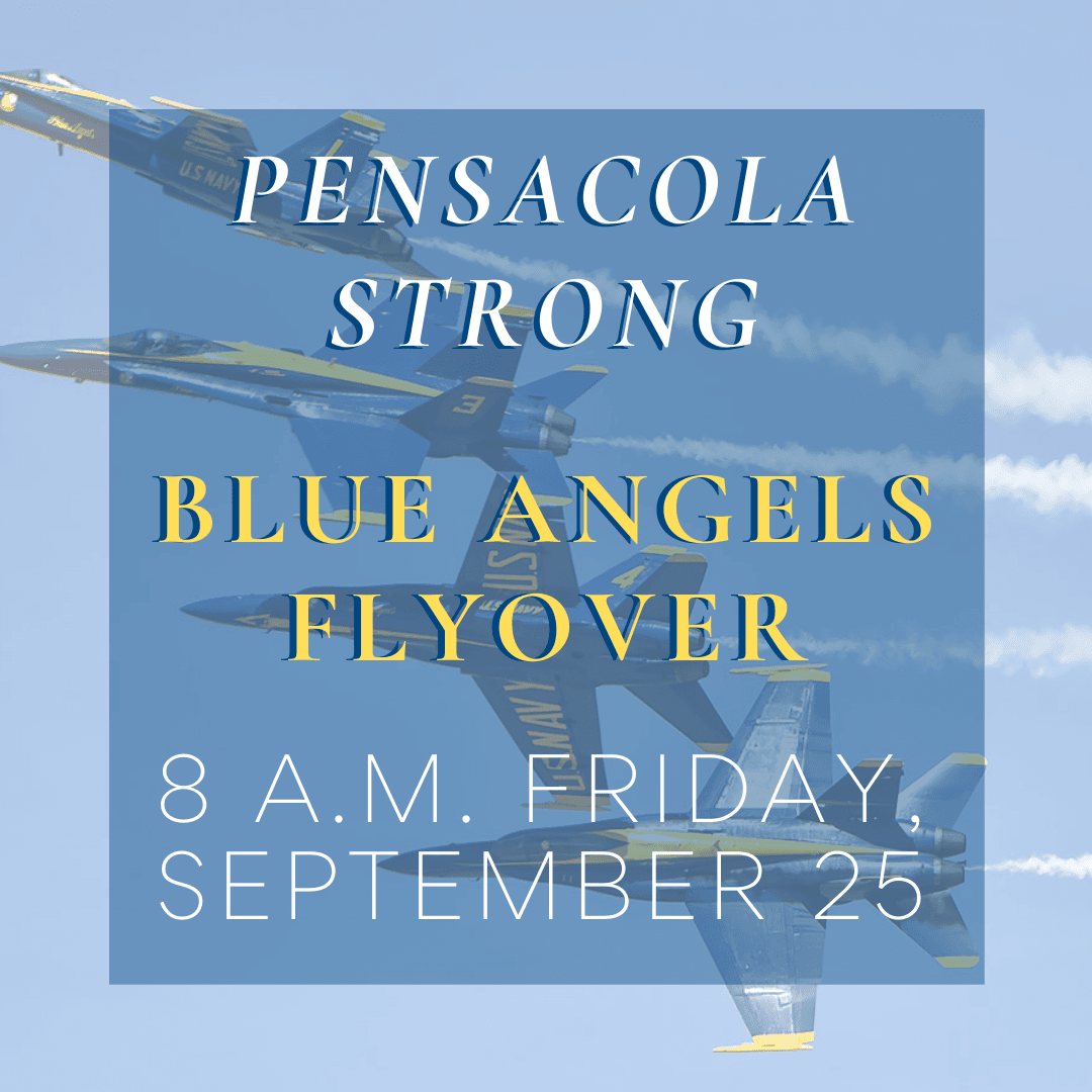 Blue Angels Flyover (3)