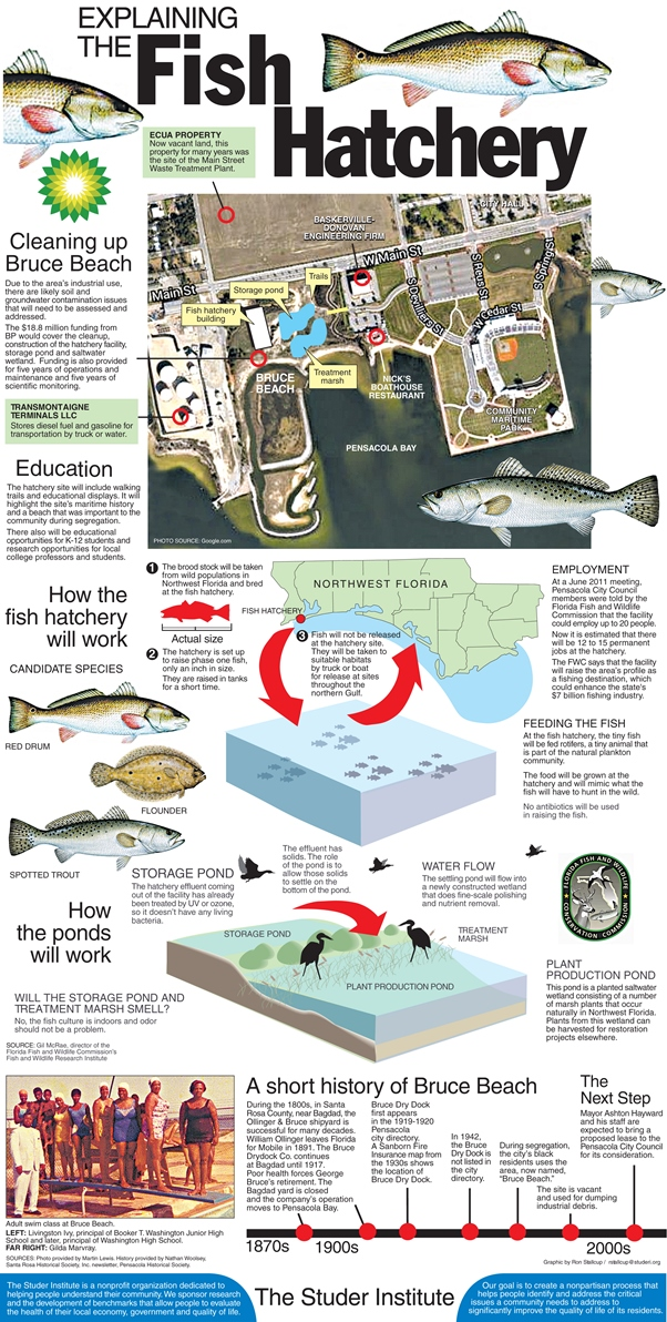 Fish Hatchery graphic